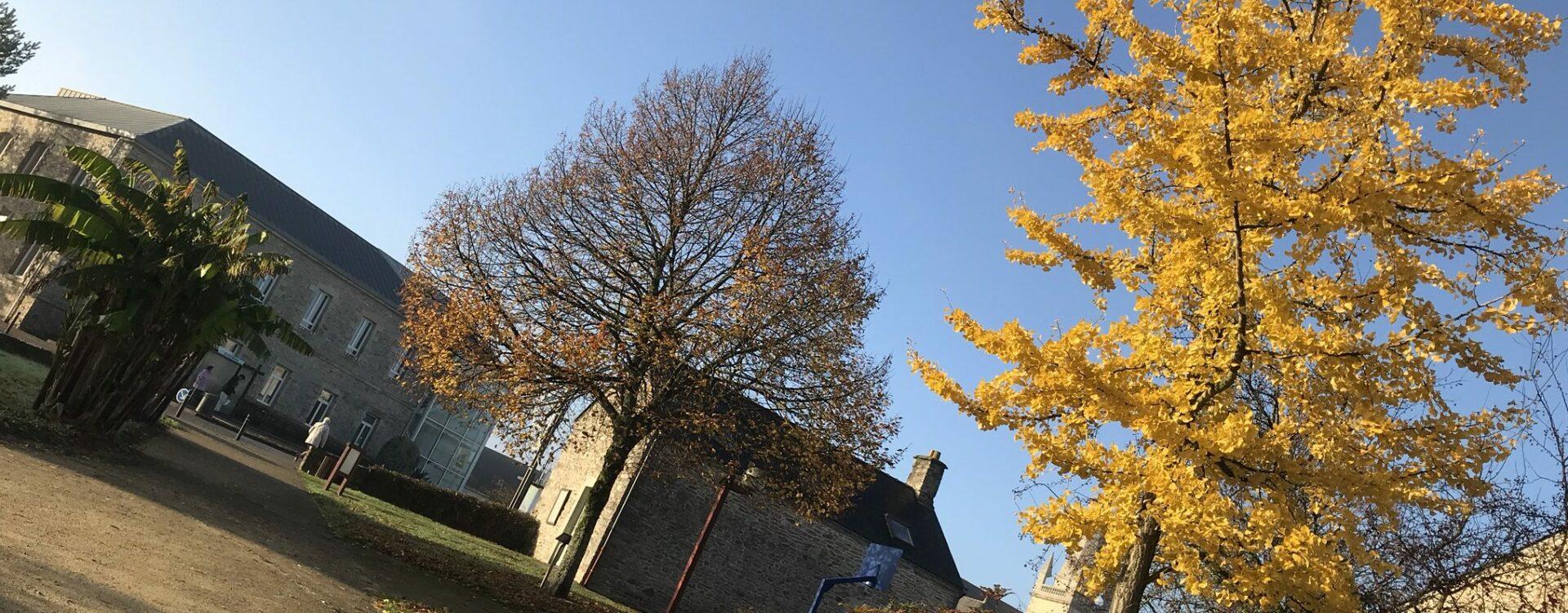 Mairie_automne