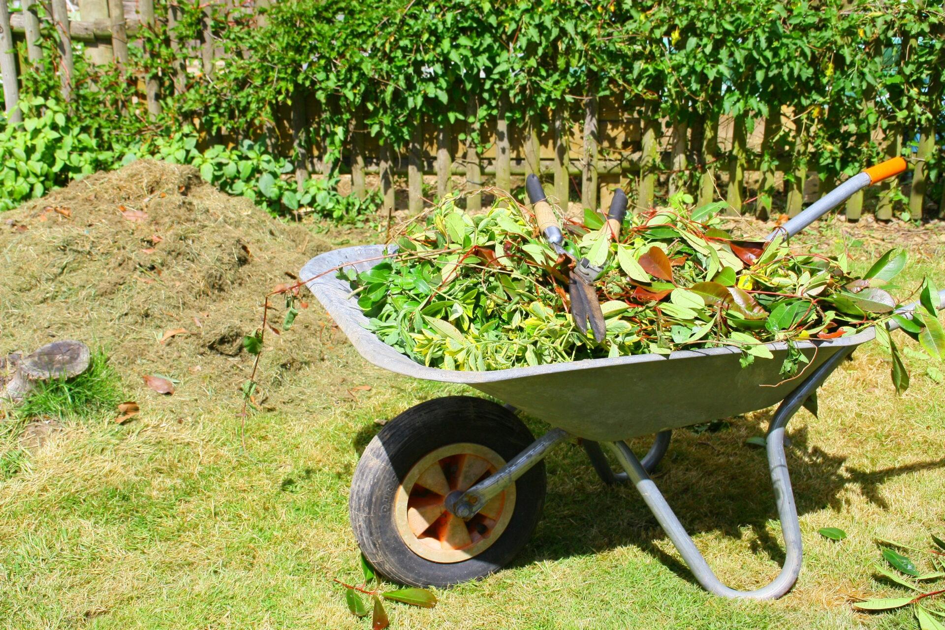 brouette de feuilles de taille ,et sécateur pour recyclage